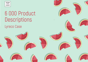 Preparing 6,000 Product Descriptions for an Online Store, in Storytelling Format, in Just 8 Months — Lyreco Case