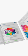 Infographic Brochure — Report for BRDO