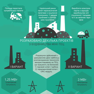 Энергия из лузги подсолнечника как отдельный бизнес