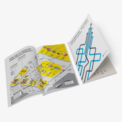 "Annual report ""Naftogaz Ukraine"" 2017"