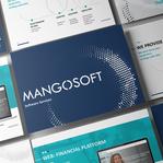 Сервисы, которые мы предоставляем — Mangosoft